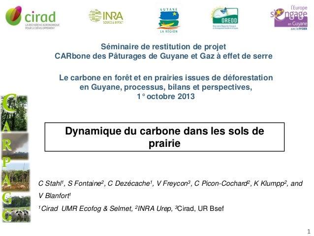 Séminaire de restitution de projet CARbone des Pâturages de Guyane et Gaz à effet de serre Le carbone en forêt et en prair...
