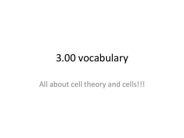 3.00 vocabulary