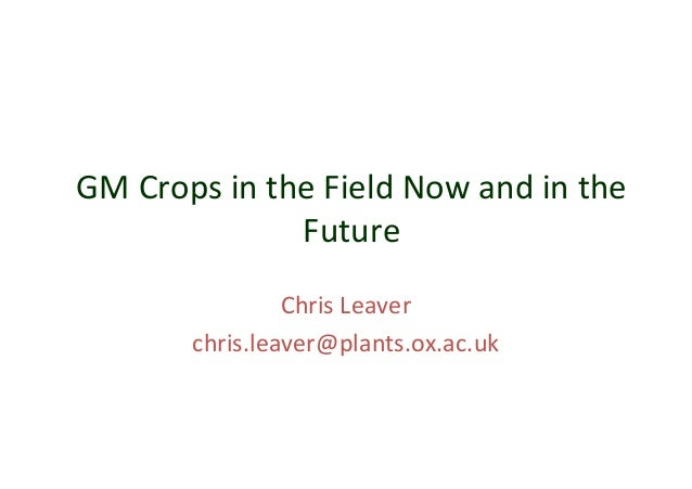 3.2 gm crops now and future leaver