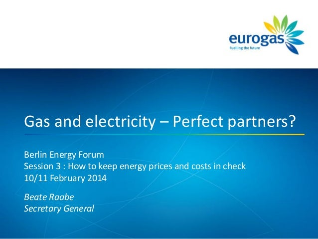 Berlin Energy Forum Session 3 : How to keep energy prices and costs in check 10/11 February 2014 Beate Raabe Secretary Gen...