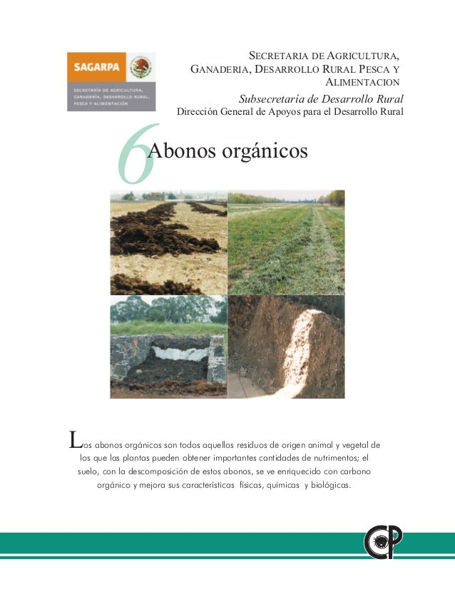 SECRETARIA DE AGRICULTURA, GANADERIA, DESARROLLO RURAL PESCA Y ALIMENTACION Subsecretaría de Desarrollo Rural Dirección Ge...