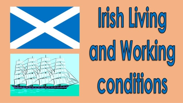 3. irish living and working conditions