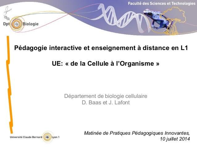 Département de biologie cellulaire D. Baas et J. Lafont Pédagogie interactive et enseignement à distance en L1 UE: « de la...