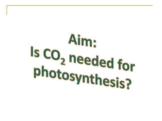Biology Formula For Photosynthesis Photosynthesis Formula