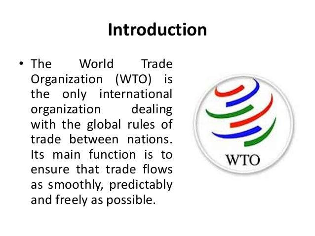 world trade organization essay