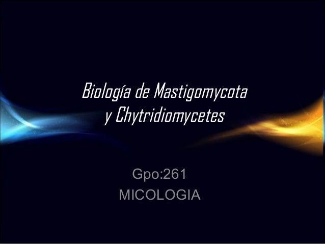 Biología de Mastigomycota y Chytridiomycetes Gpo:261 MICOLOGIA