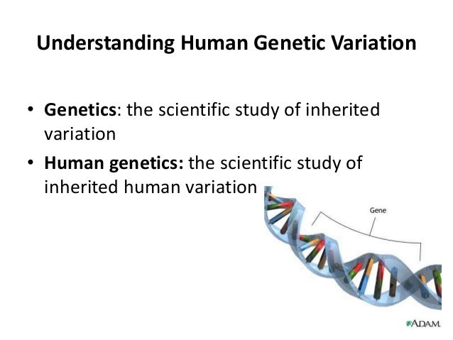 what does a geneticist do Genetics is the study of genes, genetic variation, and heredity in living organisms it is generally considered a field of biology, but intersects frequently with.