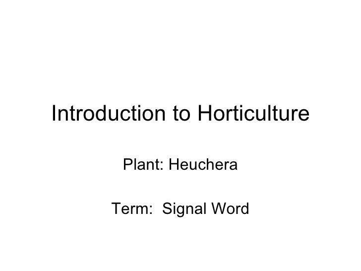 Introduction to Horticulture Plant: Heuchera Term:  Signal Word