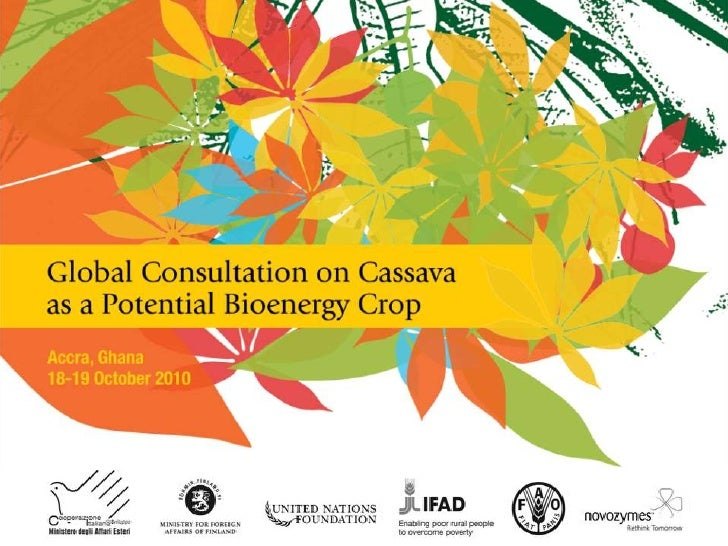 Session 3.1 Review of Genetic Tools and Knowledge that could Contribute to Cassava Productivity and to Special Uses: Fuel, Food, Industrial Starches and Feed by Clair Hershey, FAO