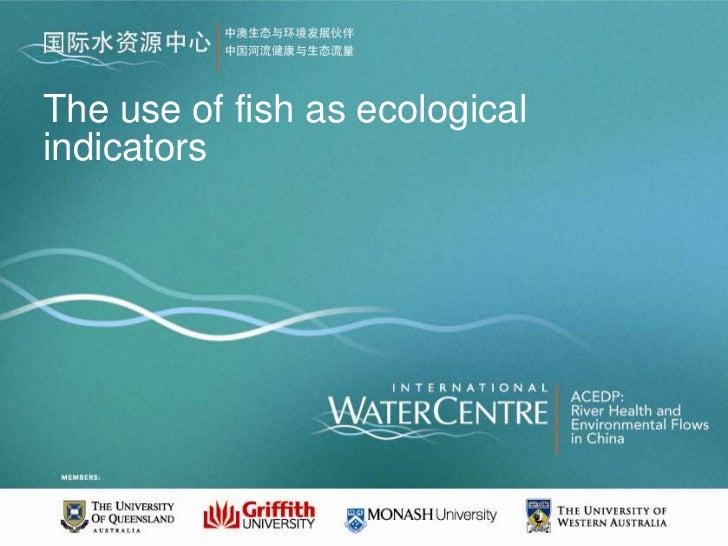The use of fish as ecologicalindicators