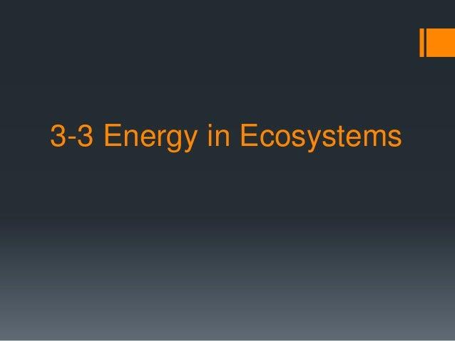 3-3 Energy in Ecosystems