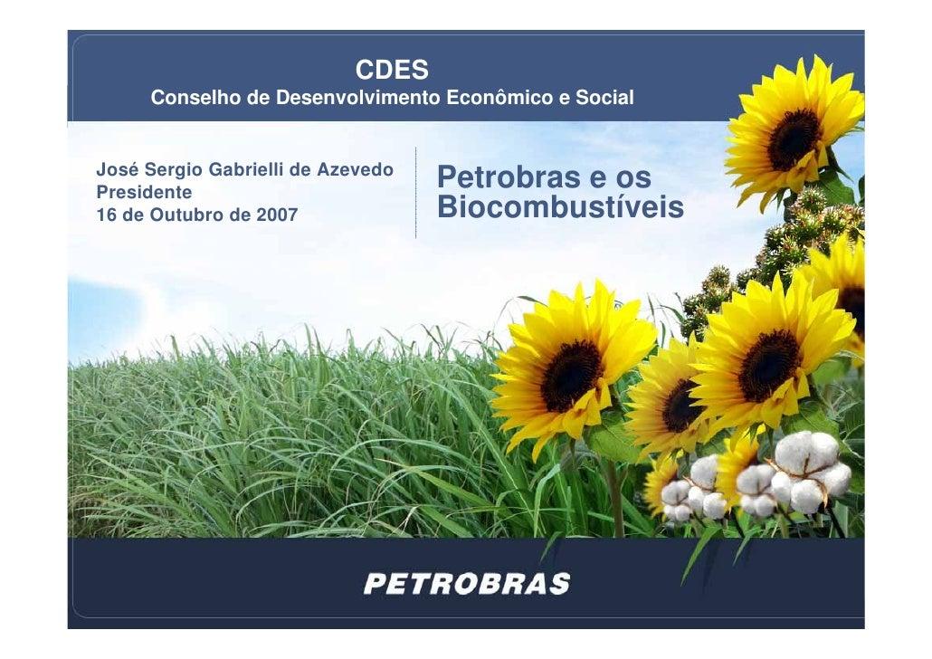 Petrobras e os Biocombustíveis