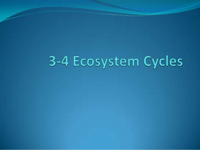 3 4 ecosystem cycles