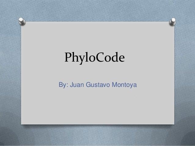 PhyloCodeBy: Juan Gustavo Montoya