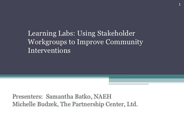 Presenters:  Samantha Batko, NAEH  Michelle Budzek, The Partnership Center, Ltd. Learning Labs: Using Stakeholder Workgrou...