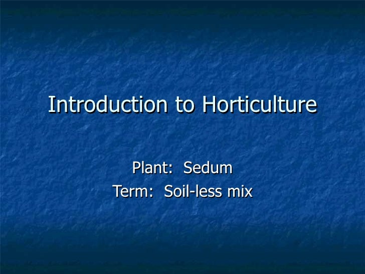 Introduction to Horticulture Plant:  Sedum Term:  Soil-less mix