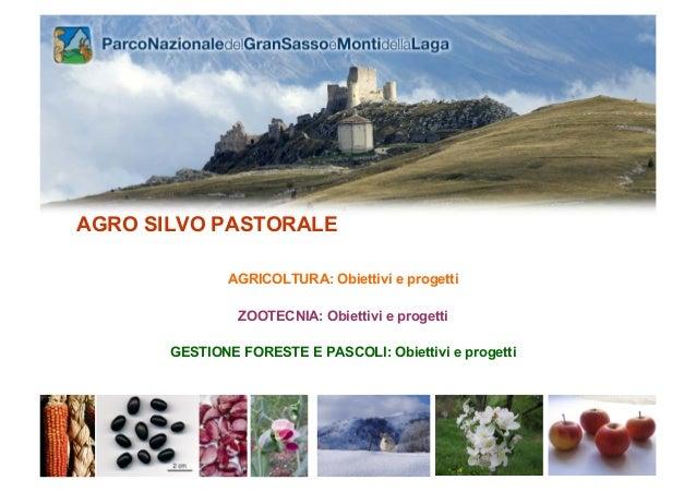 AGRO SILVO PASTORALE               AGRICOLTURA: Obiettivi e progetti                ZOOTECNIA: Obiettivi e progetti       ...