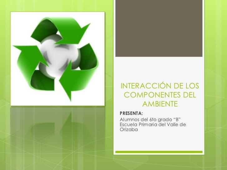 3.  Interacción de los componente del ambiente