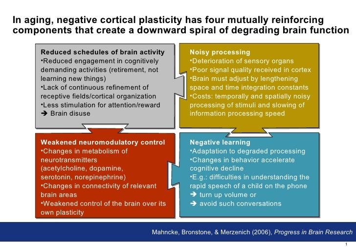 Cognitive Training Component (Brainfitness program)