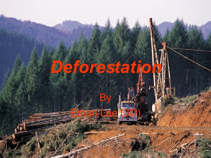 3 D Ethan Lee, Deforestation