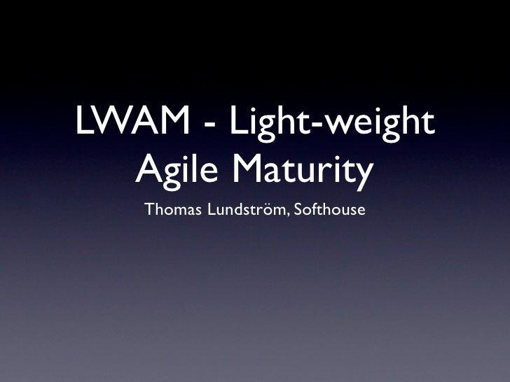 En lättviktsmodell för gradering av agila team och organisationer - Thomas Lundström
