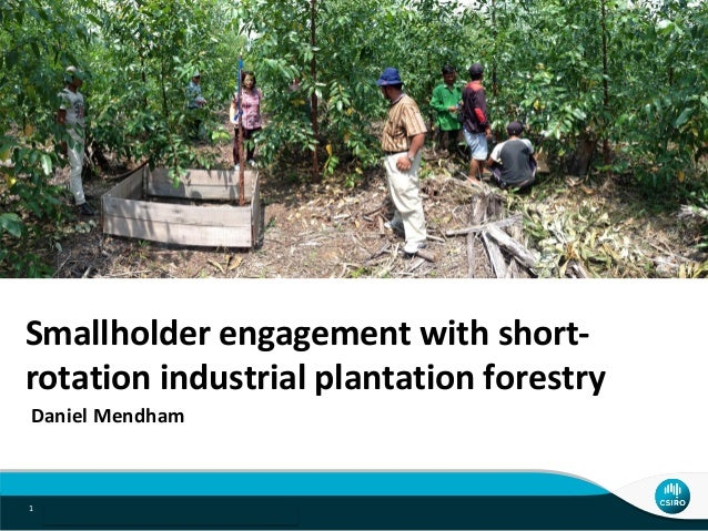 Indonesia acacia project | Daniel Mendham1 Smallholder engagement with short- rotation industrial plantation forestry Dani...