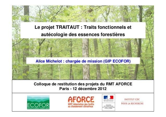 RMT-Aforce  Indicateurs architecturaux de la réponse des arbres aux modifications climatiques:  pin d'Alep, pin sylvestre,...
