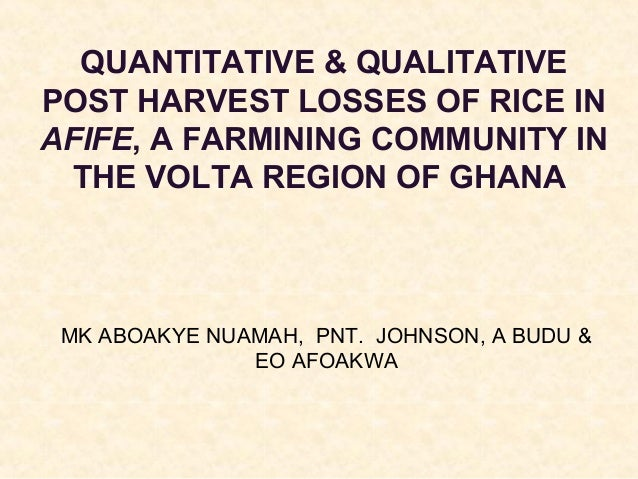 QUANTITATIVE & QUALITATIVE POST HARVEST LOSSES OF RICE IN AFIFE, A FARMINING COMMUNITY IN THE VOLTA REGION OF GHANA  MK AB...