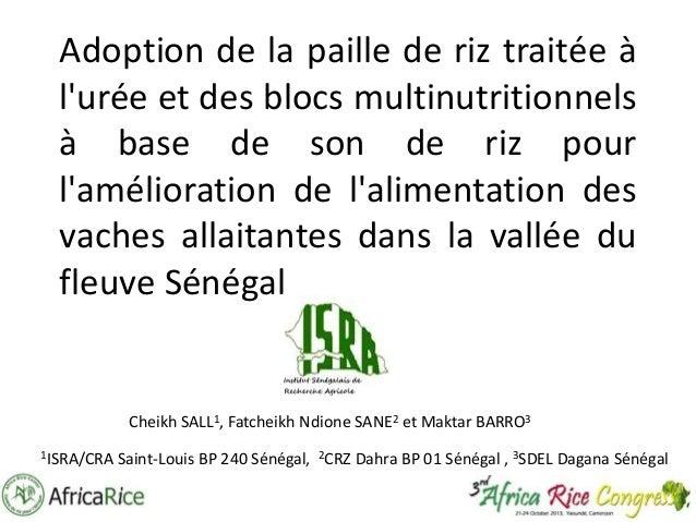 Adoption de la paille de riz traitée à l'urée et des blocs multinutritionnels à base de son de riz pour l'amélioration de ...