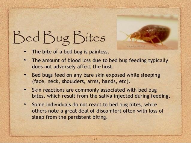 GA bed bugs