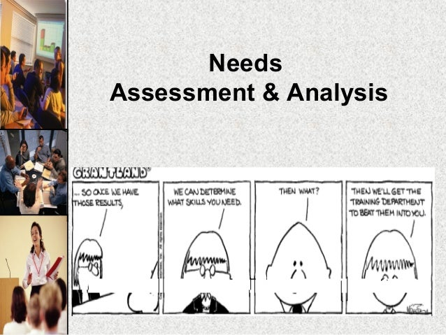 NeedsAssessment & Analysis