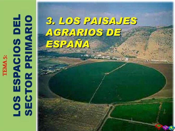 3. LOS PAISAJES AGRARIOS DE ESPAÑA 3. LOS PAISAJES AGRARIOS DE ESPAÑA