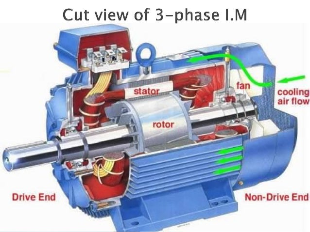 3 ph induction motor ppt for Three phase induction motor