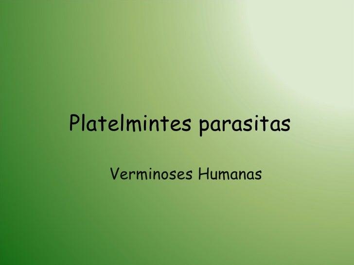 Platelmintes parasitas Verminoses Humanas