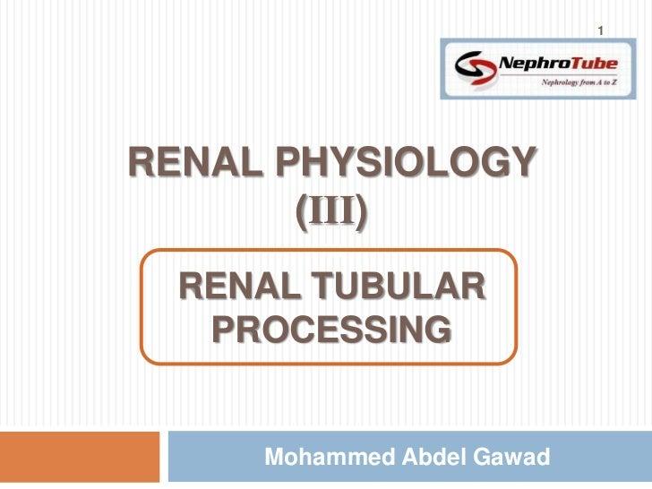 1RENAL PHYSIOLOGY       (III)        m RENAL TUBULAR  PROCESSING     Mohammed Abdel Gawad