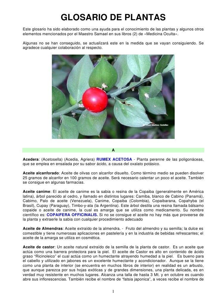 GLOSARIO DE PLANTASEste glosario ha sido elaborado como una ayuda para el conocimiento de las plantas y algunos otroseleme...
