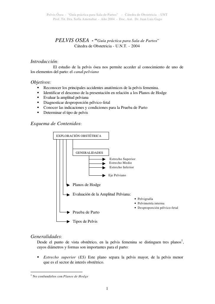 """Pelvis Ósea - """"Guía práctica para Sala de Partos"""" - Cátedra de Obstetricia - UNT                 Prof. Tit. Dra. Sofía Ame..."""