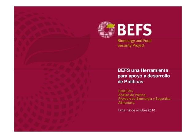 302 erika felix   proyecto de bioenergía y seguridad alimentaria befs-fao