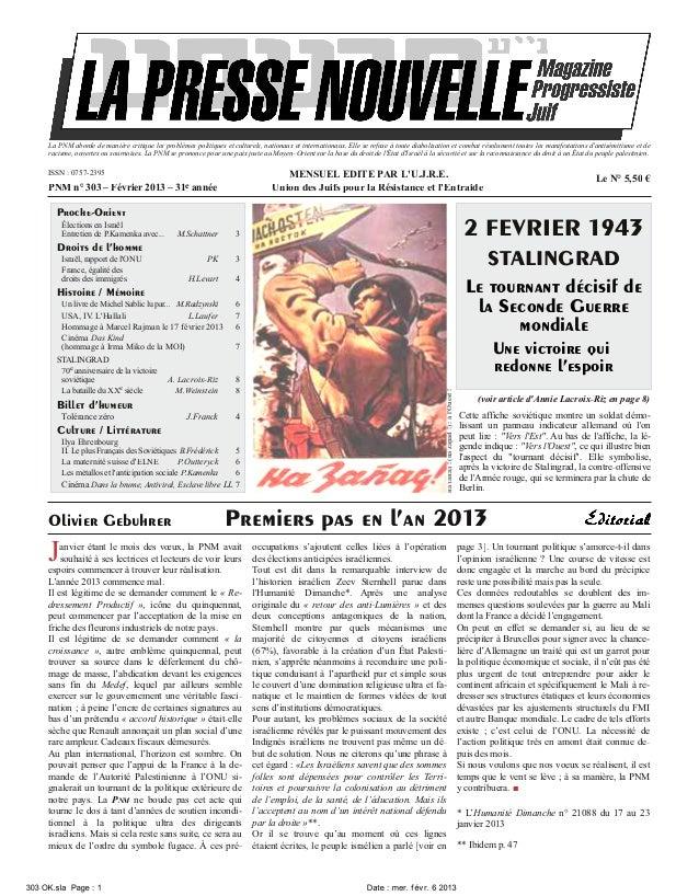 La Nouvelle Presse Magazine 303  fevrier 2013