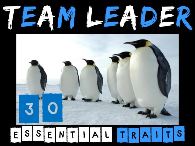 TEAM LEADER  30  ESSENTIAL TRAITS