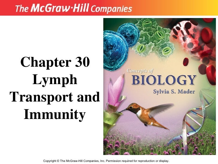 Copyright  ©  The McGraw-Hill Companies, Inc. Permission required for reproduction or display. Chapter 30 Lymph Transport ...