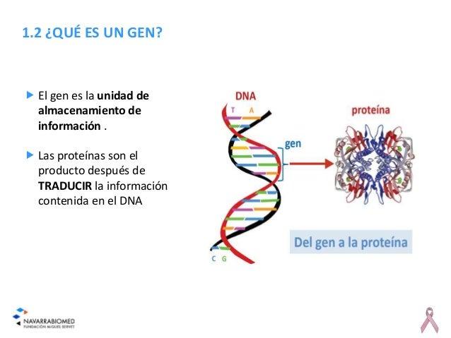 Resultado de imagen de gen