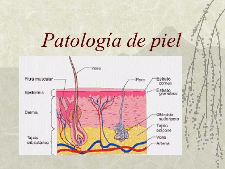 Patología de piel