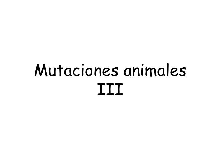 Mutaciones animales III