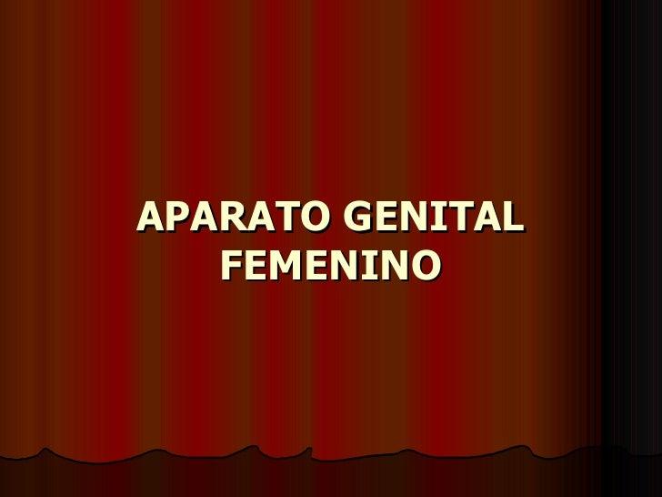 32  Aparato Genital Femenino