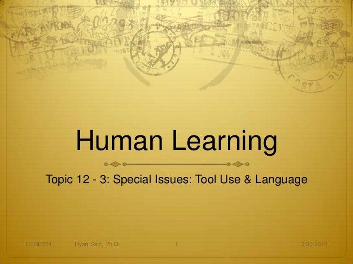 324 12 3 special topics tool use language