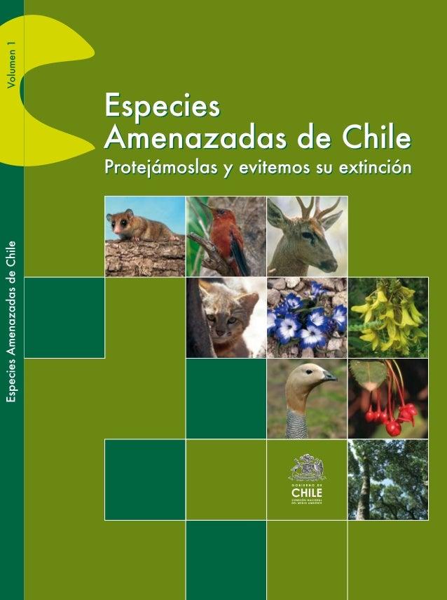Especies Amenazadas de Chile Protejámoslas y evitemos su extinción COMISIÓN NACIONAL DEL MEDIO AMBIENTE 2009