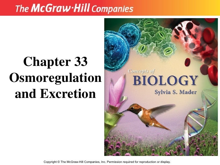 Copyright  ©  The McGraw-Hill Companies, Inc. Permission required for reproduction or display. Chapter 33 Osmoregulation a...