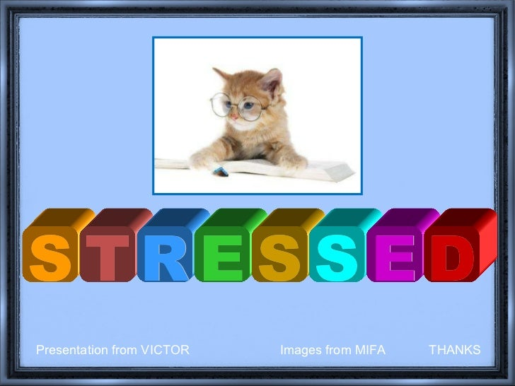 S T R E S S E D Presentation from VICTOR  Images from MIFA  THANKS
