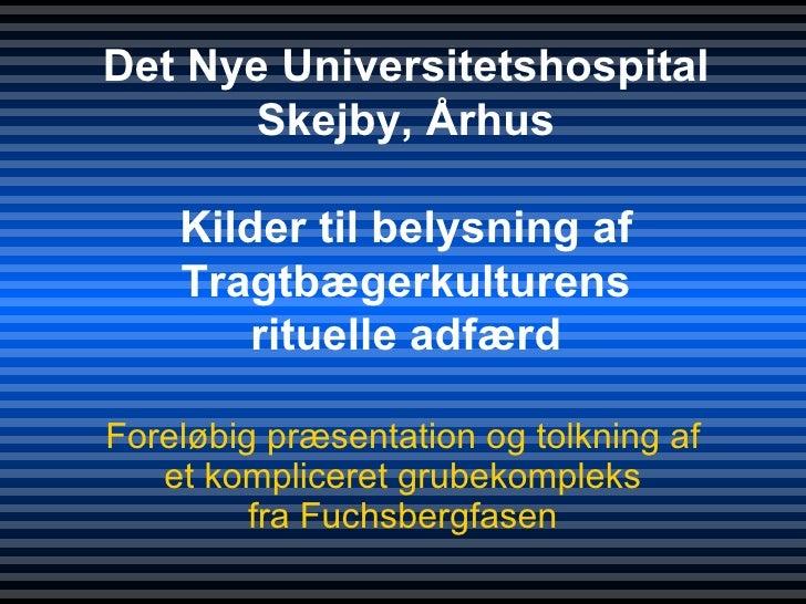 Foreløbig præsentation og tolkning af et kompliceret grubekompleks fra Fuchsbergfasen Det Nye Universitetshospital Skejby,...